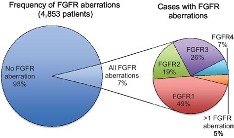 The FGFR Landscape in Cancer: Analysis of 4,853 Tumors by