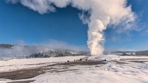 5 Reasons to Visit Yellowstone This Winter - Jackson Hole, WY