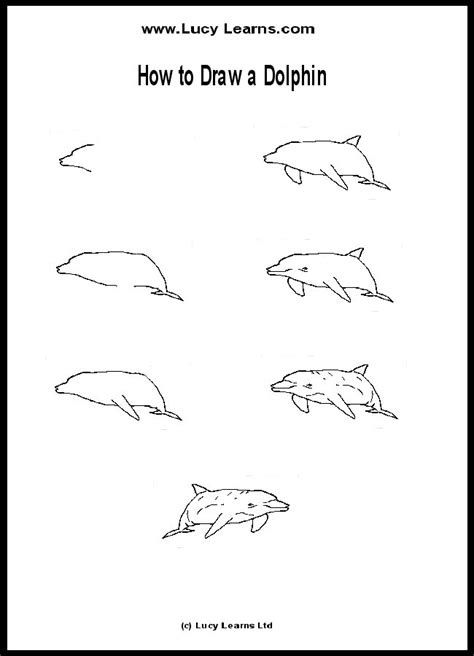 Free Dolphins Drawings For Kids, Download Free Clip Art