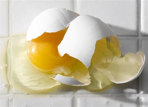 How to Get Rid of Rotten Egg Smell | Hunker